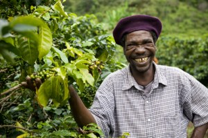 The farm of James Chirwa (not present), in the Lukalazi Zone, coffee growing region, Malawi. Farmer: Peter Banda