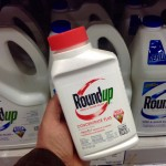roundup-display