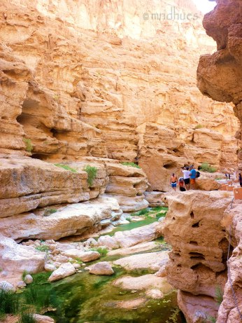 Canyons of Oman
