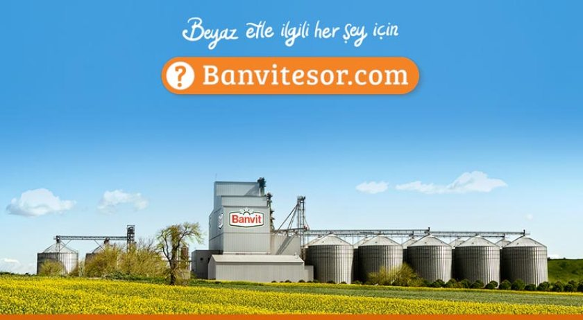 banvite-sor-kurumsal-blog