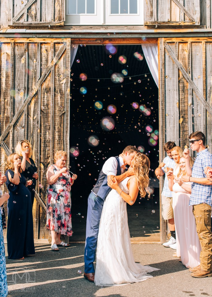 Bubble Exit The Densmore Farm Wedding Photography - Michael Rizza Photography