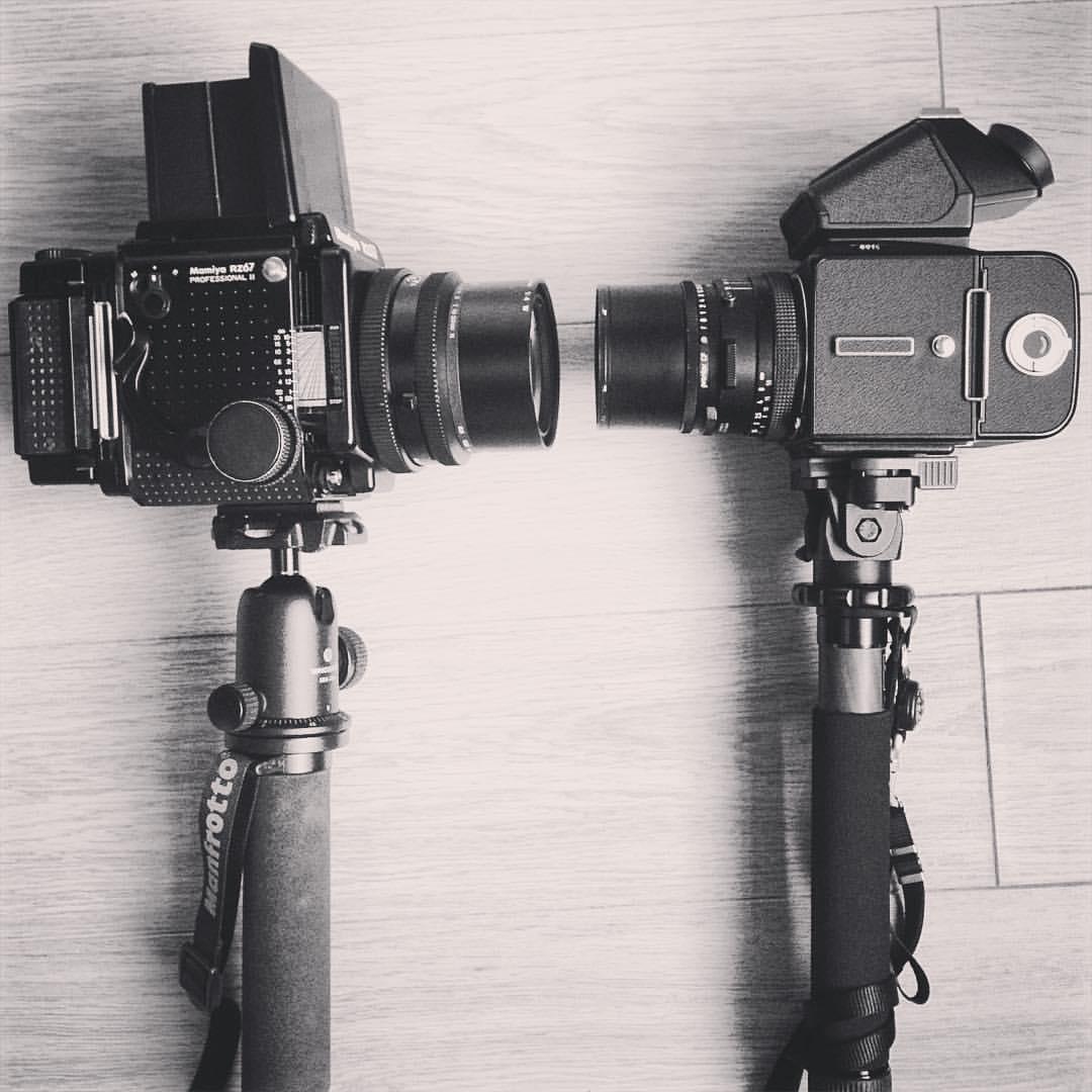 Hasselblad vs Mamiya RZ67 (6x6 vs 6x7 Cameras)