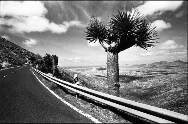 Fuerteventura Cycling / Film Photography
