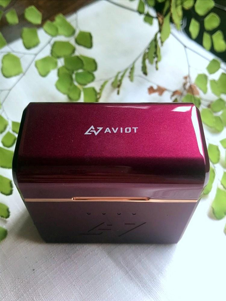 AVIOT TE-D01d mk2,日本音樂首選調音耳機 7