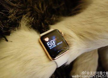 寵物代言「Apple Watch Edition 18K金」出現在中國大陸!