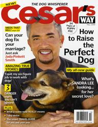 Cesar's Way - 4x