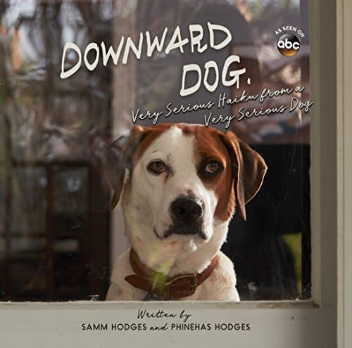 Downward Dog: Very Serious Haiku from a Very Serious Dog by Samm Hodges and Phineas Hodges, Mr. Media Interviews