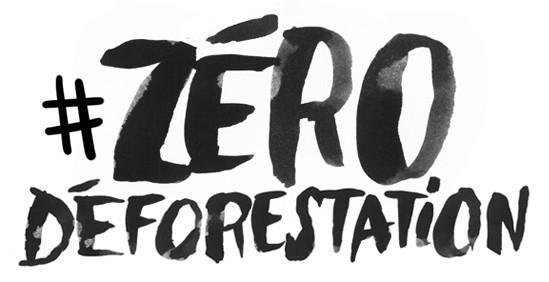 zerodef Déforestation : Greenpeace épingle Vincent Bolloré