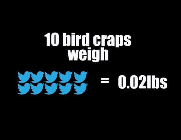 Birds-Ratio