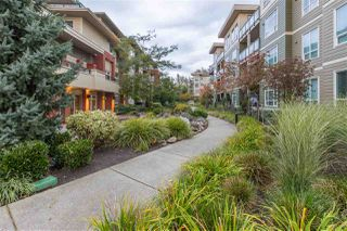 "Photo 20: B201 20211 66 Avenue in Langley: Willoughby Heights Condo for sale in ""Elements"" : MLS®# R2412184"