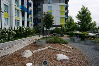 "Photo 26: 101 3289 RIVERWALK Avenue in Vancouver: South Marine Condo for sale in ""R+R"" (Vancouver East)  : MLS®# R2463417"