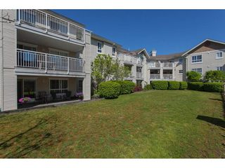 """Photo 19: 123 19750 64 Avenue in Langley: Willoughby Heights Condo for sale in """"The Davenport"""" : MLS®# R2144269"""