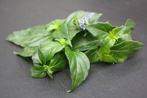 Edible flowers: Mushroom Leaf