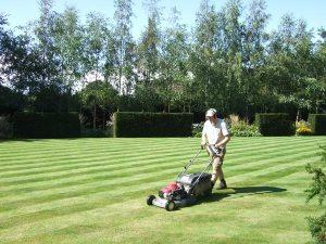 Gardening jobs: Start mowing again