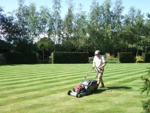 Gardening jobs: Start mowing again
