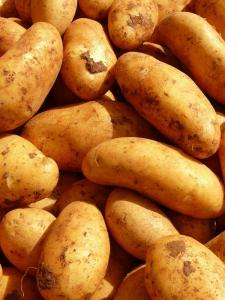 Gardening jobs for May: Earth up potatoes