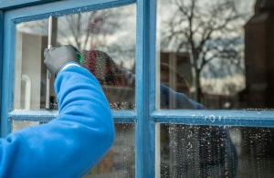 Gardening jobs for November: Clean glass