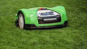 Gardening jobs for November: Raise mower blades