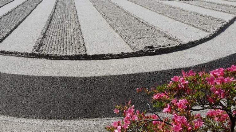 Japanese Plants: Azalea