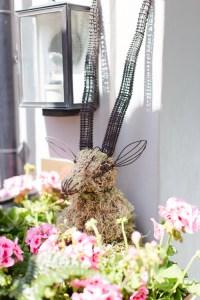 Geraniums at the Door - Zetter House Clerkenwell