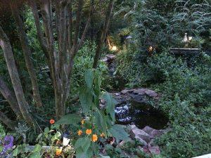 Backyards of the world: Jennifer Christie