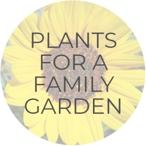Plants for a Family Garden | Plant Guide