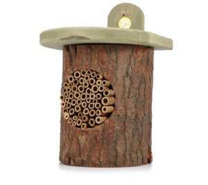 Attract UK Wildlife with this Bee Log