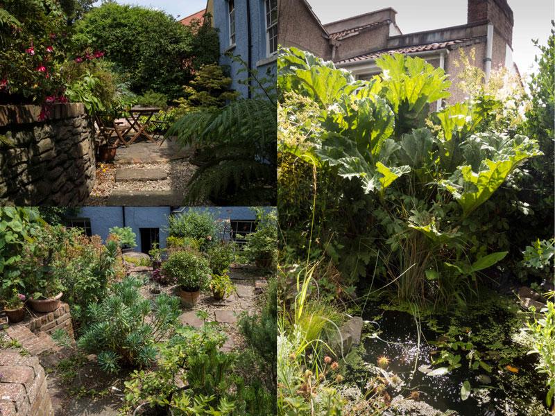 Views of Marius Grose's garden