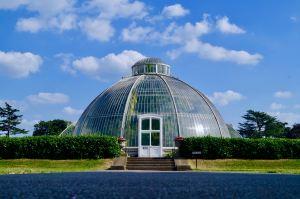 Kew Gardens glass greenhouse