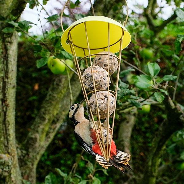Fat balls in a bird feeder