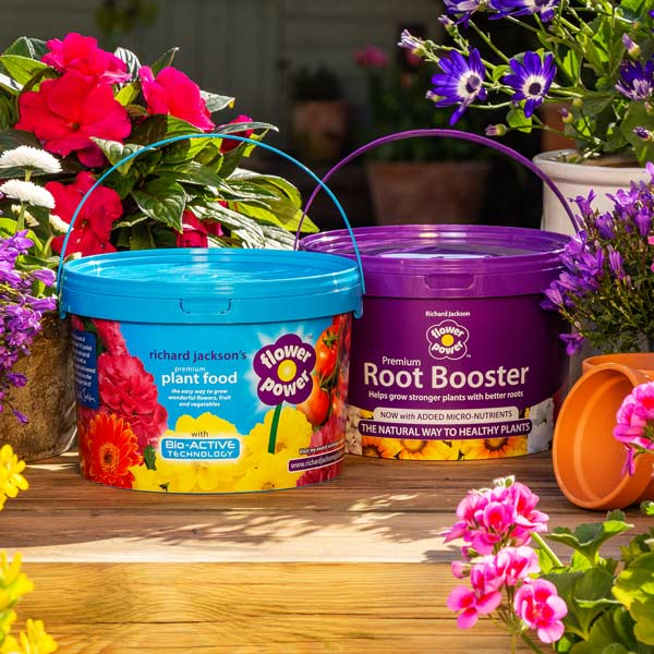 Flower Power Root Booster