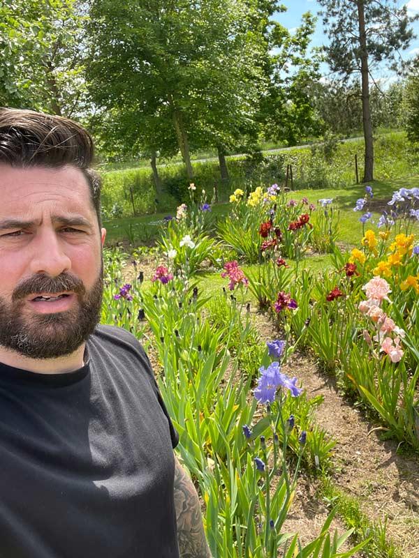 Michael Perry - Iris Garden