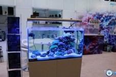 aquarium BLAU