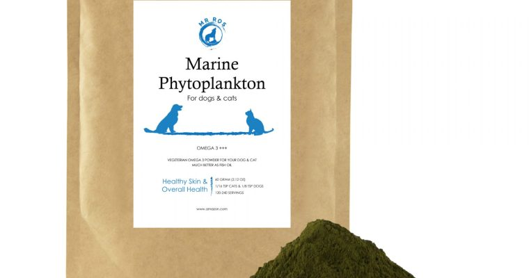 The Benefits of Marine Phytoplankton for Dogs and Cats