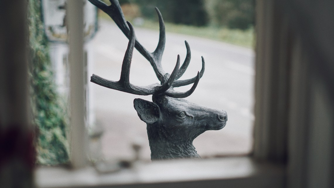 The Reindeer Statue at The Speech House Hotel. Forest of Dean. Blog by Skirmantas Petraitis.