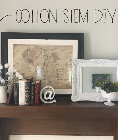 Cotton Stems DIY