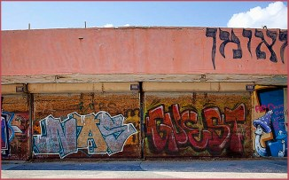 2-dolphinarium graffiti 12