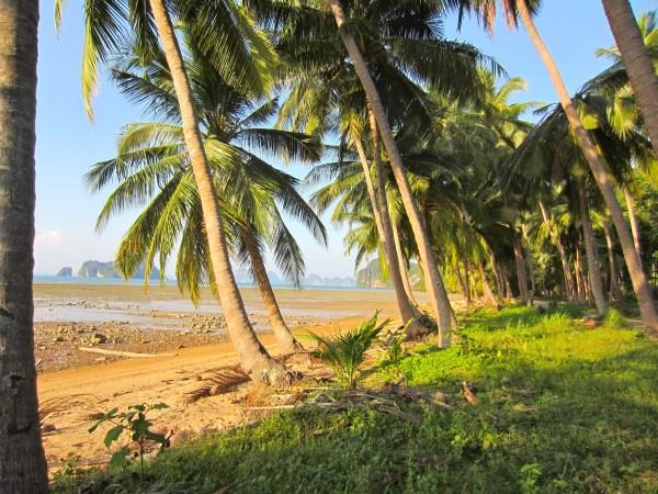 Ya Noi, Thailand (mrscarmichael)