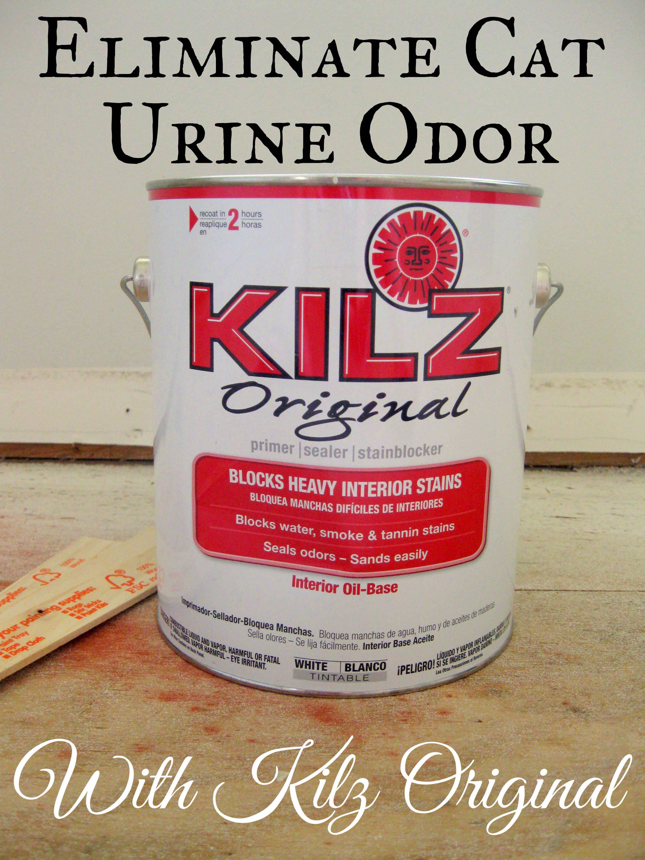Eliminating Cat Urine Odor