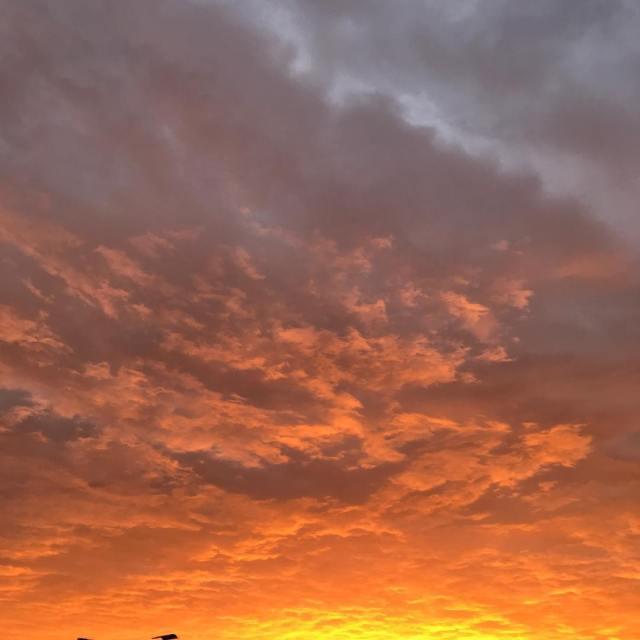 Da gestern gefhlt jeder den Sonnenaufgang fotografiert hat zeige ichhellip