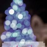 A special Advent calendar