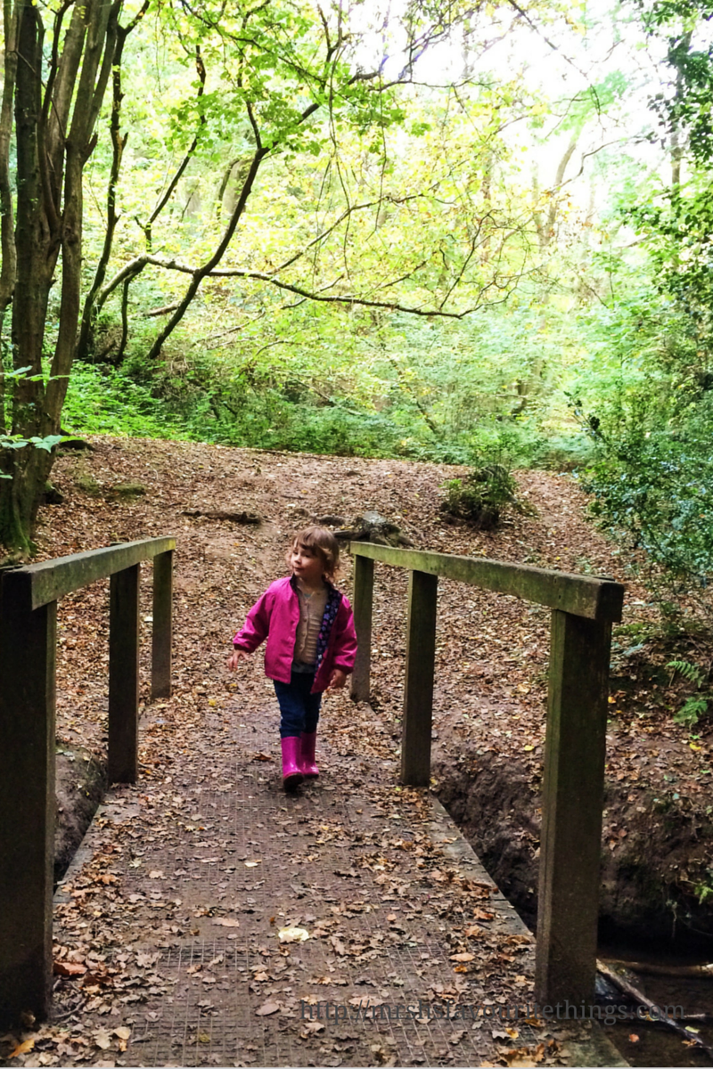 A little girl crosses a small bridge in a wood on a sunny Autumn day_photo taken with iPhone_iPhoneography competition with Three_Mrs H's favourite things