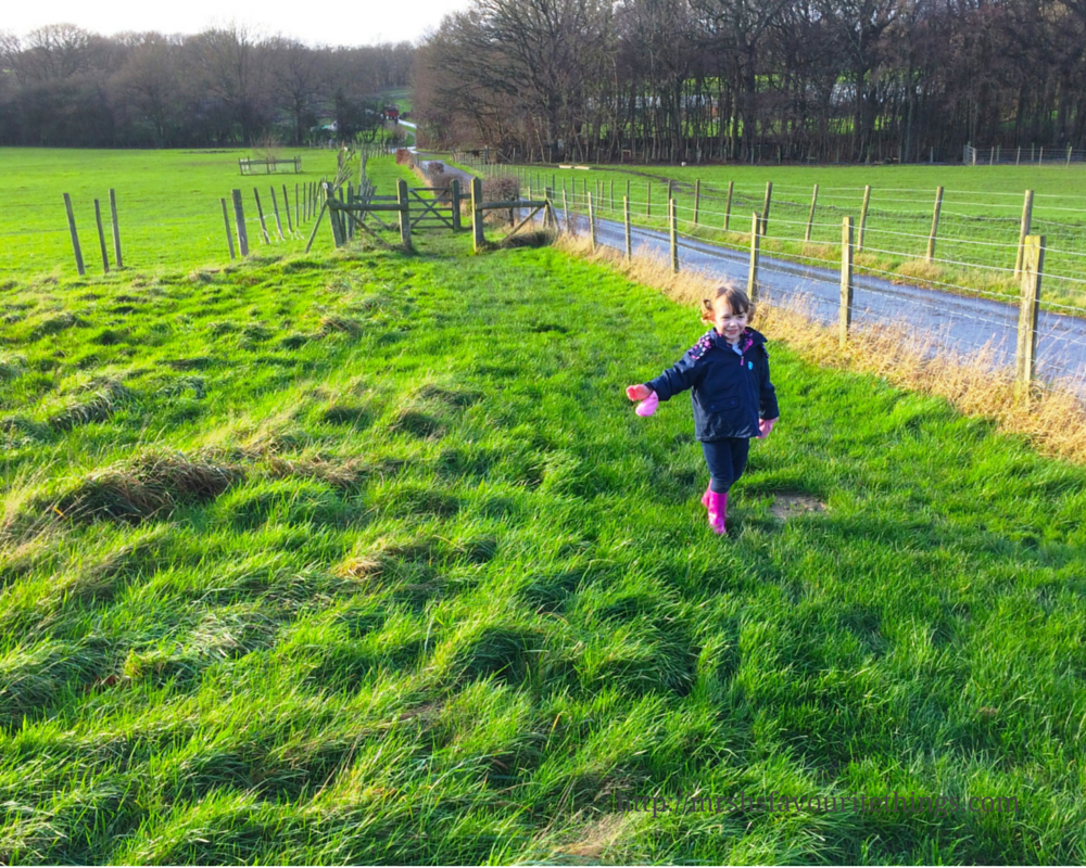 A little girl in wet weather gear and pink wellies walks up a hill in the winter sunshine before green fields and trees Days out in the winter sunshine - My Captured Moment_Mrs H's favourite things