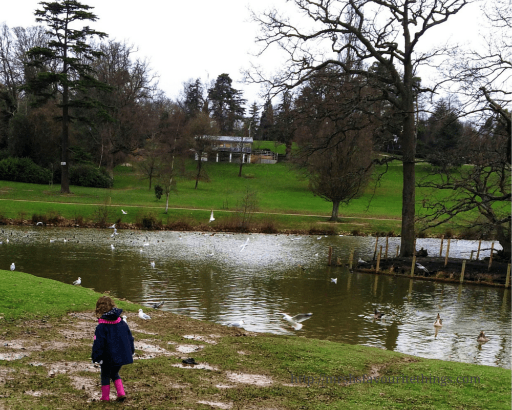 A little girl paddling in muddy puddles stands in front of a lake in a large park with trees _ Days out in the winter sunshine - My Captured Moment_Mrs H's favourite things