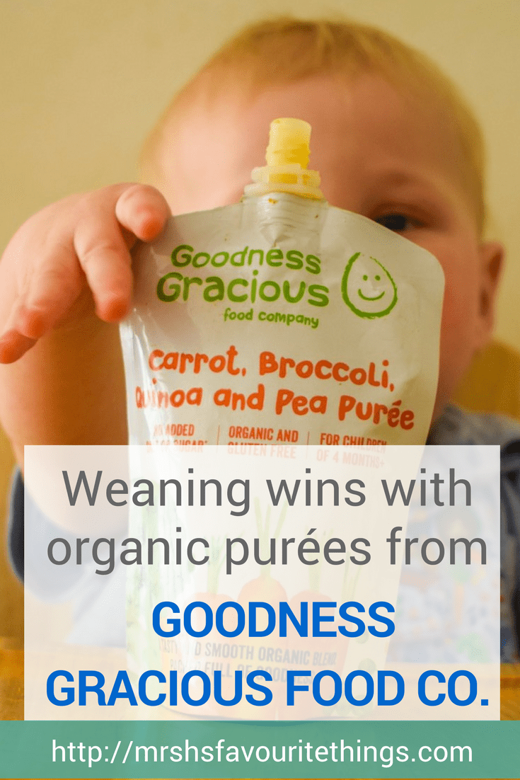 A photograph of a 9 month old baby sitting who is in the process of Weaning, sitting in his highchair with a pouch of organic purée from Goodness Gracious Food Company in front of him - Weaning wins with organic purées from Goodness Gracious Food Company - Mrs H's favourite things