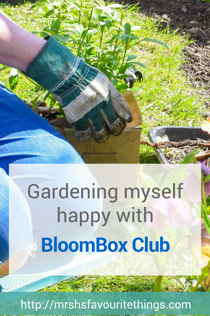 "A photograph of a woman gardening - she is kneeling by a flower bed and planting one of the plants from the Spring Outdoor box from BloomBox Club Subscription service featuring the text ""Gardening myself happy with BloomBox Club"" - Gardening myself happy with BloomBox Club - Mrs H's favourite things"