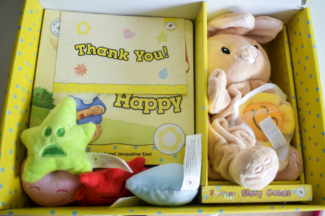 A photograph of the contents of Skylark Learning's My First Emotions Box - My First Impressions Of My First Emotions Box - Mrs H's favourite things