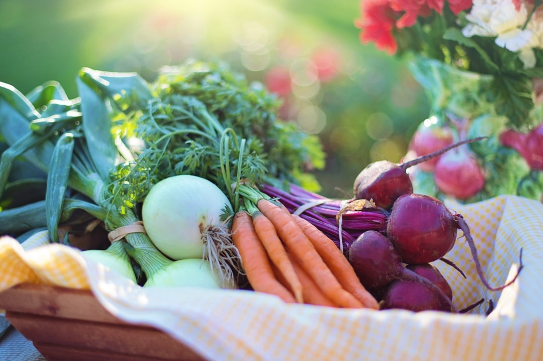 A bokeh photograph of a basket of freshly grown vegetables - Easy Changes You Can Make To Boost Your Health Today - Mrs H's favourite things