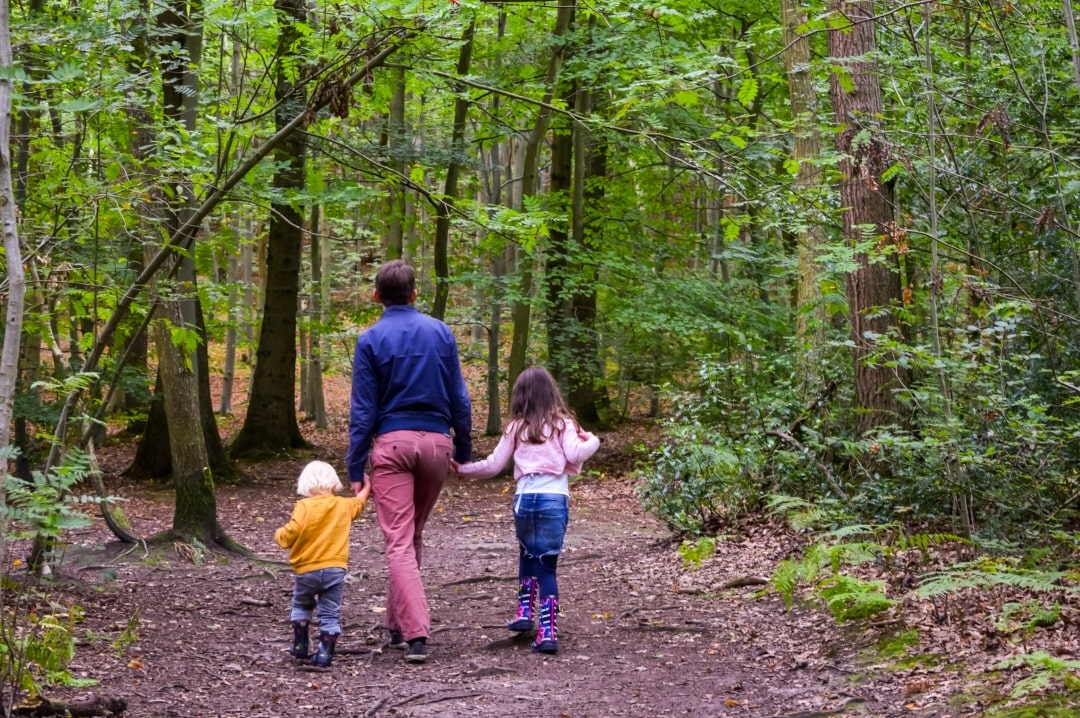 A photograph of a father walking through the woods with his daughter and his son - Finding Happiness and Chasing Rainbows - Mrs H's favourite things