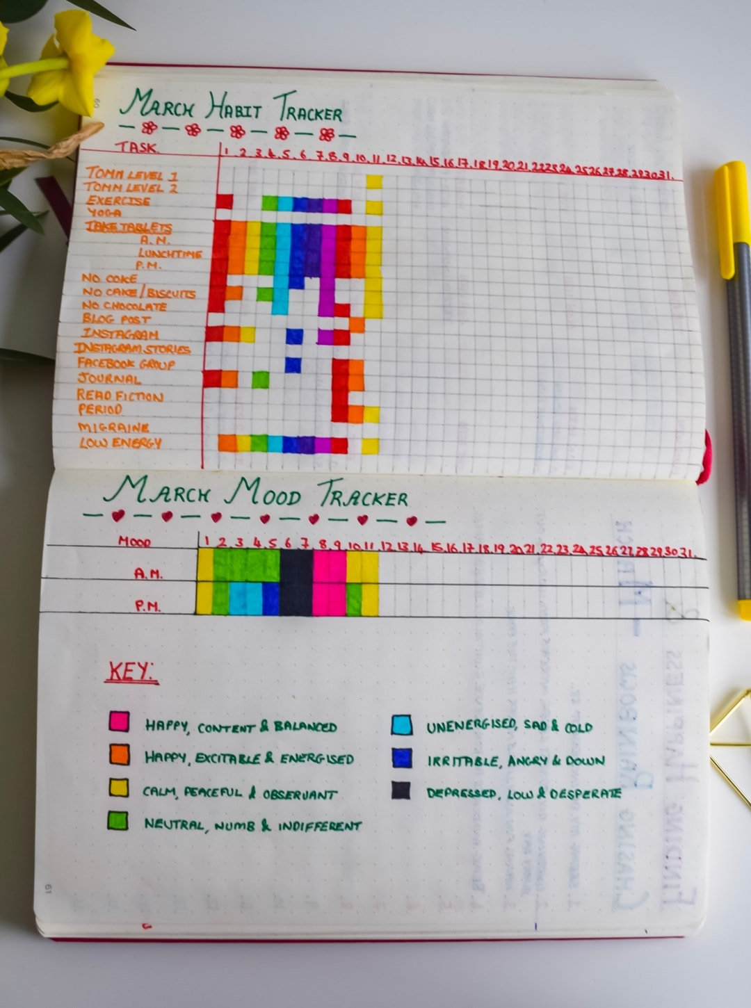 A photograph of my monthly habit and mood trackers from my monthly spreads in my bullet journal - My Monthly Bullet Journal Set-up- Mrs H's favourite things